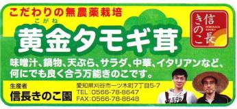 黄金タモギ茸のパッケージラベル画像./味噌汁・鍋物・天ぷら・サラダ・中華・イタリアンなど何にでもよく合う、肉厚で美味な万能キノコ
